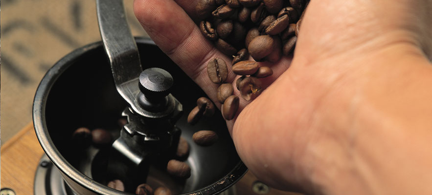 A handful of freshly roasted coffee beans go in the grinder.